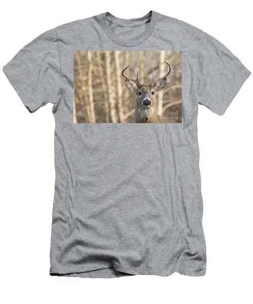 White-tailed Buck Men's T-Shirt (Athletic Fit)