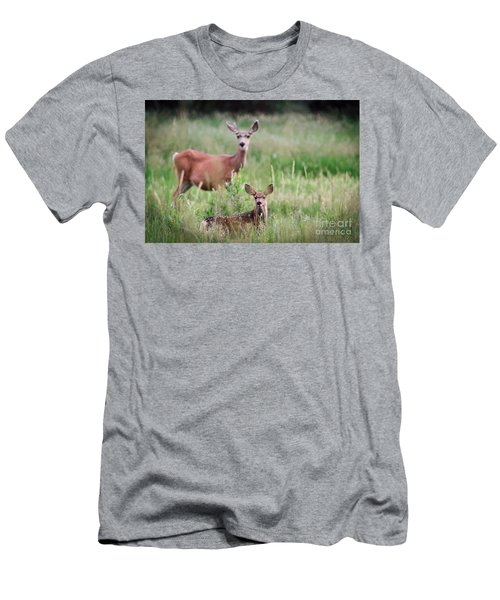 White-tailed Fawn Men's T-Shirt (Athletic Fit)