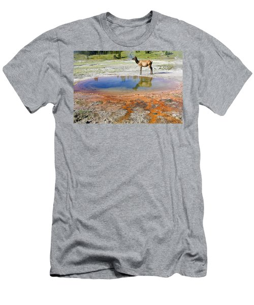 Wild And Free In Yellowstone Men's T-Shirt (Slim Fit) by Teresa Zieba