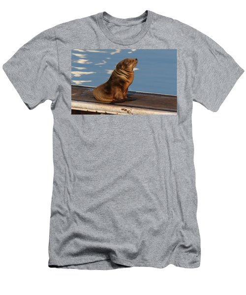 Wild Pup Sun Bathing - 2 Men's T-Shirt (Athletic Fit)