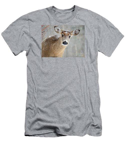 Winter Buck Men's T-Shirt (Slim Fit) by Amy Porter