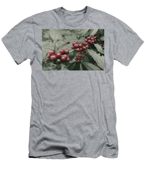 Winterberry Men's T-Shirt (Athletic Fit)
