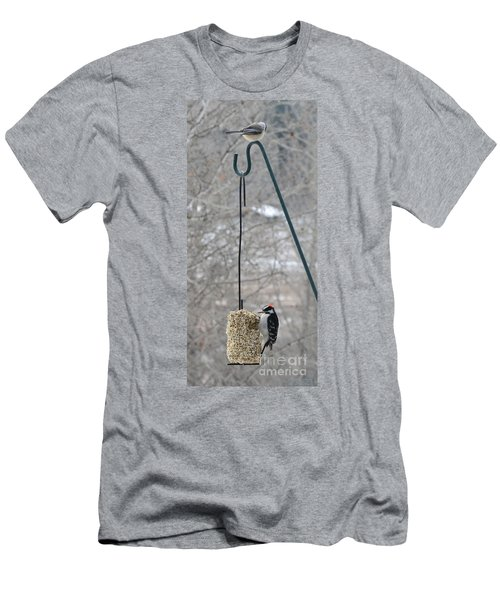 Woodpecker And Chickadee Men's T-Shirt (Athletic Fit)