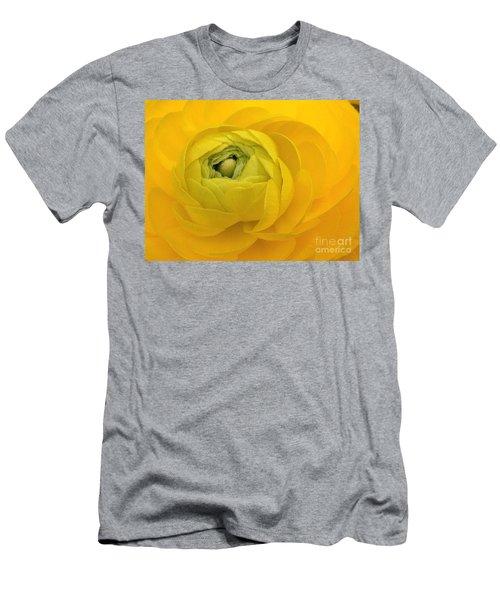 Yellow Ranunculus  Men's T-Shirt (Athletic Fit)