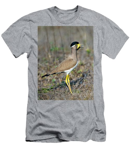 Yellow-wattled Lapwing Vanellus Men's T-Shirt (Slim Fit) by Panoramic Images