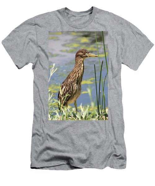 Young Heron Men's T-Shirt (Athletic Fit)