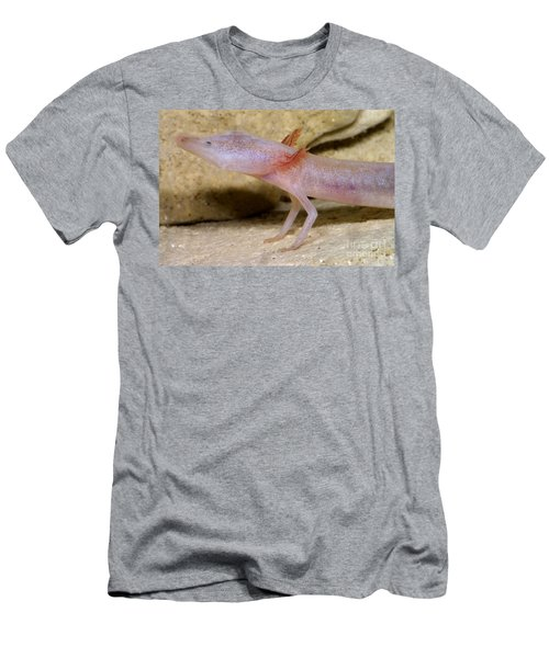 Blind Salamander Men's T-Shirt (Athletic Fit)
