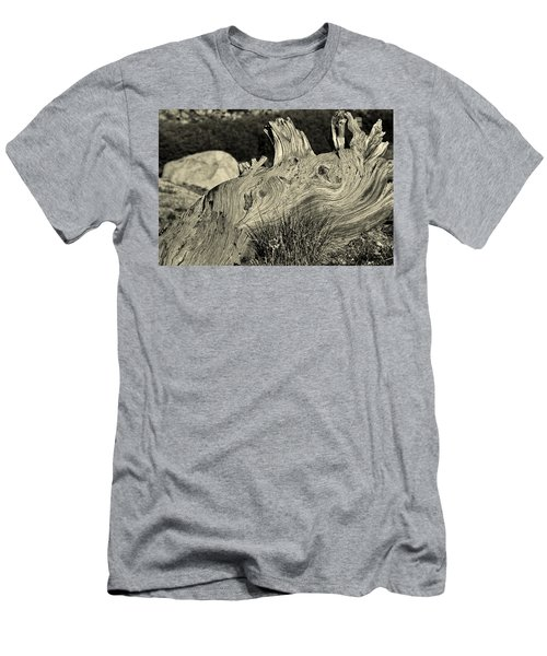 Weathered Men's T-Shirt (Slim Fit) by Colleen Coccia