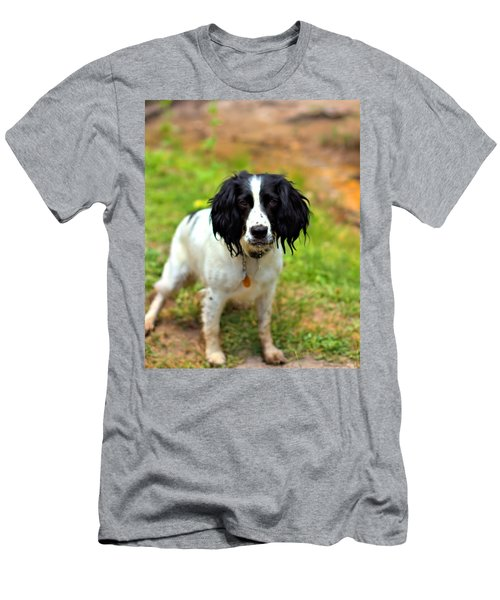 Spaniel Men's T-Shirt (Athletic Fit)