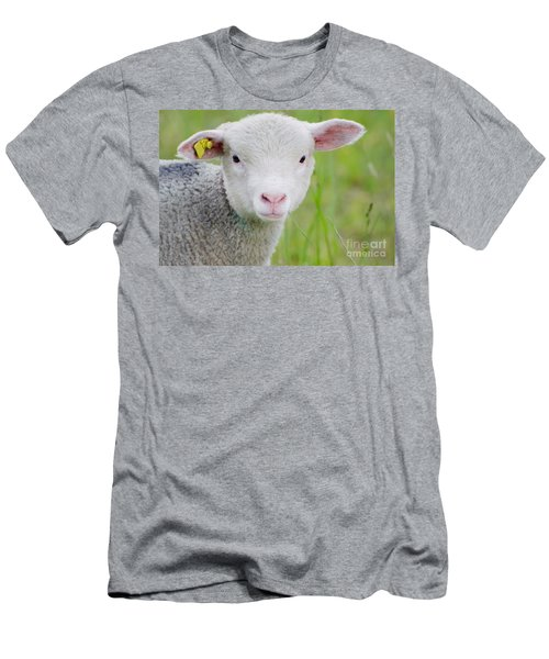 Young Sheep Men's T-Shirt (Athletic Fit)