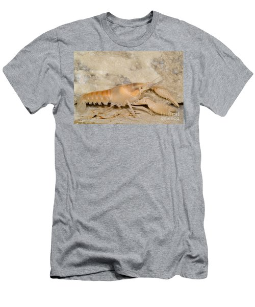 Miami Cave Crayfish Men's T-Shirt (Athletic Fit)