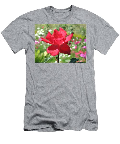 A Beautiful Red Flower Growing At Home Men's T-Shirt (Slim Fit) by Ashish Agarwal