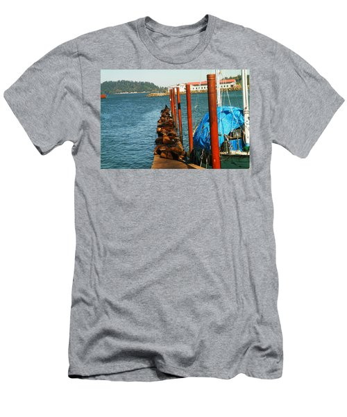 A Dock Of Sea Lions Men's T-Shirt (Athletic Fit)