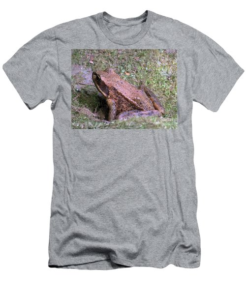 Men's T-Shirt (Slim Fit) featuring the photograph A Friendly Frog by Chalet Roome-Rigdon