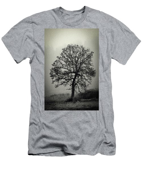 Age Old Tree Men's T-Shirt (Slim Fit) by Steve McKinzie
