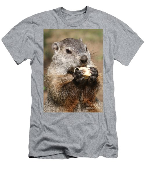 Animal - Woodchuck - Eating Men's T-Shirt (Athletic Fit)