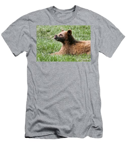 Black Bear Cub I Men's T-Shirt (Athletic Fit)
