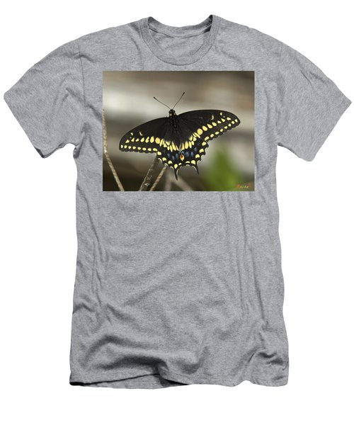 Black Swallowtail Din103 Men's T-Shirt (Athletic Fit)