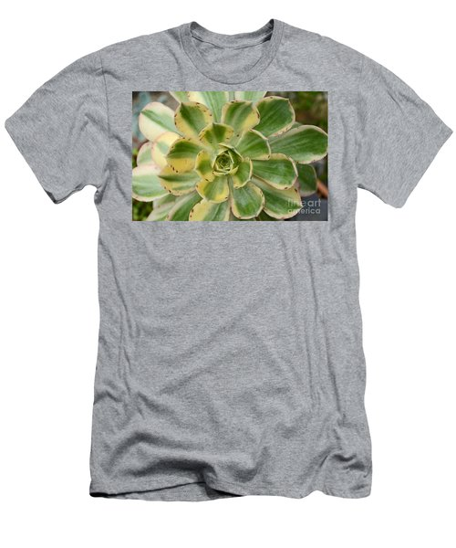 Cactus 63 Men's T-Shirt (Athletic Fit)