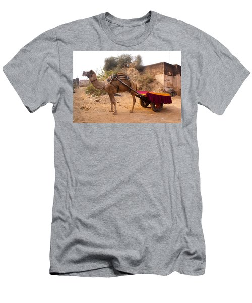 Camel Yoked To A Decorated Cart Meant For Carrying Passengers In India Men's T-Shirt (Slim Fit) by Ashish Agarwal