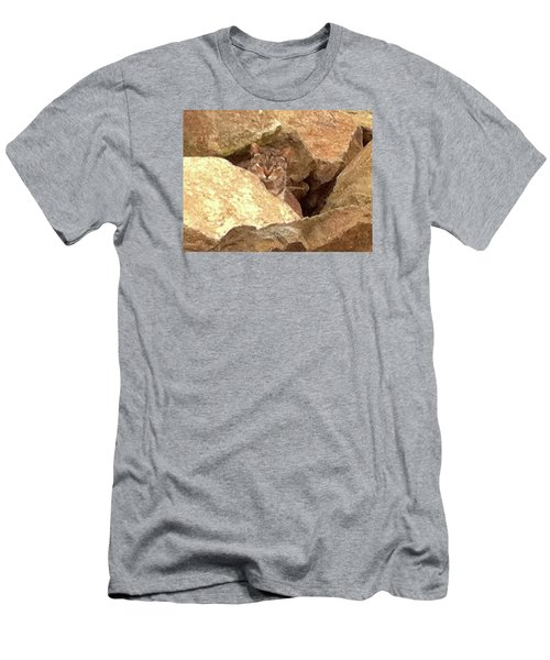 Cat On The Rocks Men's T-Shirt (Athletic Fit)