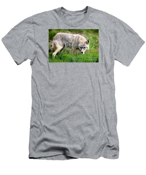 Men's T-Shirt (Slim Fit) featuring the photograph Coyote On The Prowl by Kathy  White