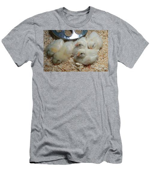 Men's T-Shirt (Slim Fit) featuring the photograph Cute And Fuzzy Chicks by Chalet Roome-Rigdon