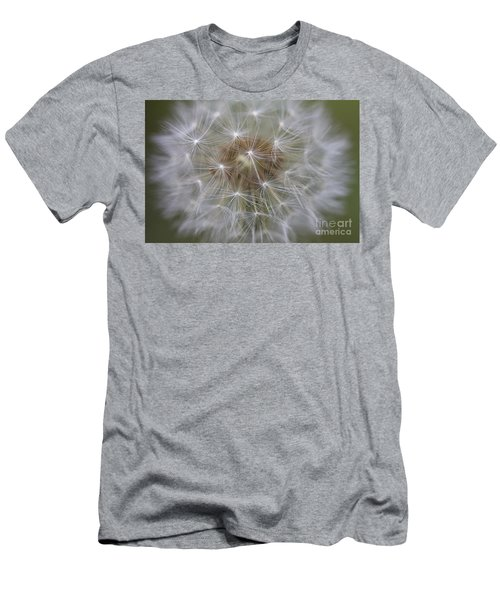 Dandelion Clock. Men's T-Shirt (Athletic Fit)