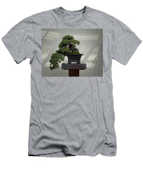 Dwarf Japanese Garden Juniper Men's T-Shirt (Athletic Fit)
