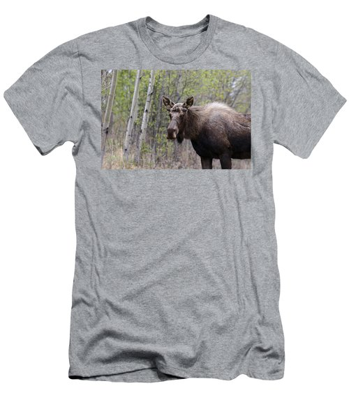 Men's T-Shirt (Slim Fit) featuring the photograph Early Spring by Doug Lloyd