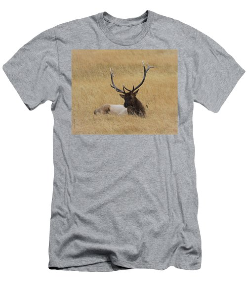 Men's T-Shirt (Slim Fit) featuring the photograph Elk In The Meadow by Steve McKinzie