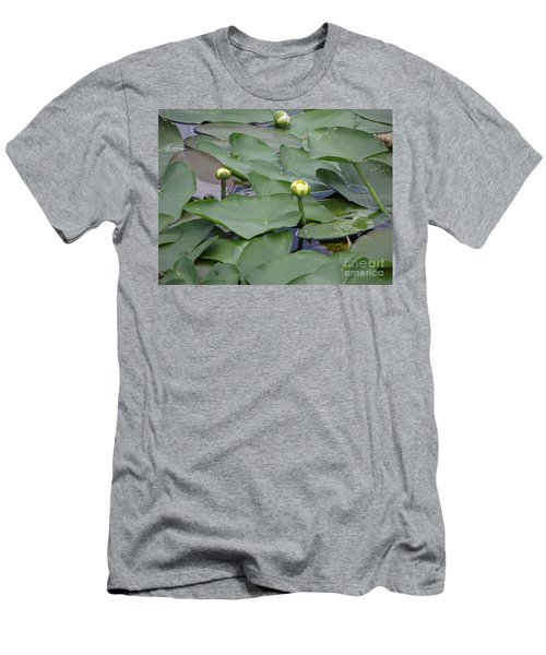 Everglade Beauty Men's T-Shirt (Athletic Fit)