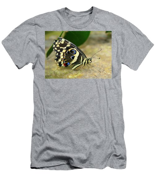 Eye To Eye With A Butterfly Men's T-Shirt (Athletic Fit)