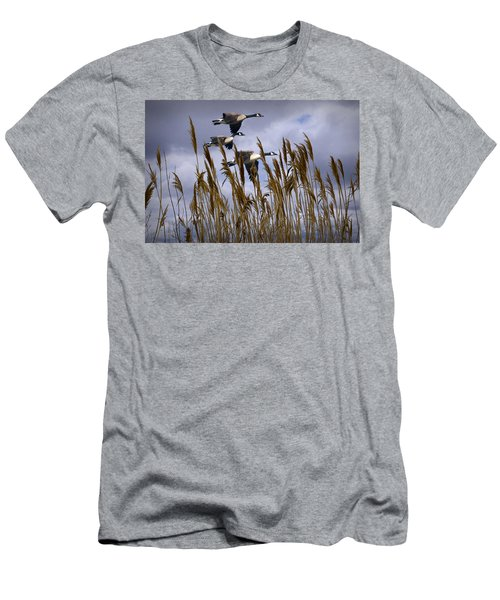 Geese Coming In For A Landing Men's T-Shirt (Athletic Fit)