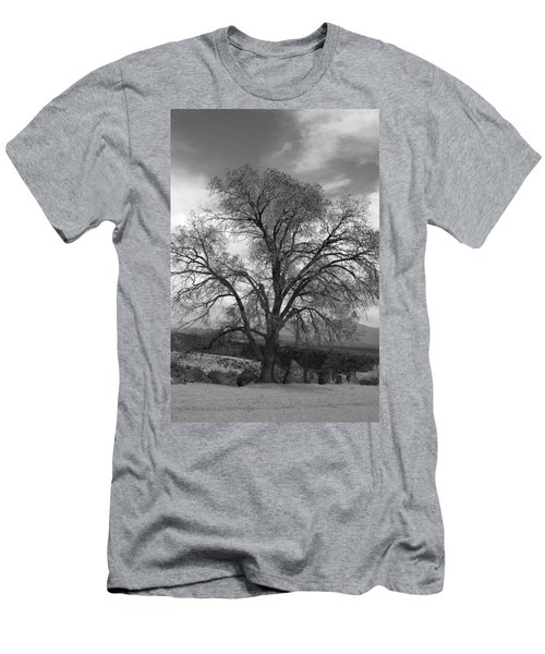 Grand Canyon Life Tree Men's T-Shirt (Athletic Fit)
