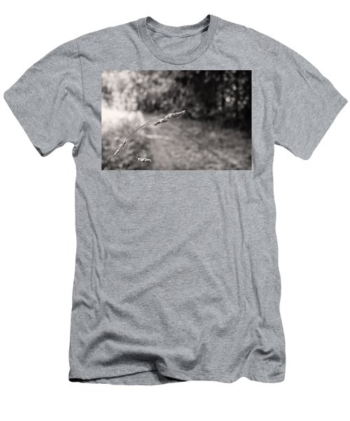 Grass Over Dirt Road Men's T-Shirt (Athletic Fit)