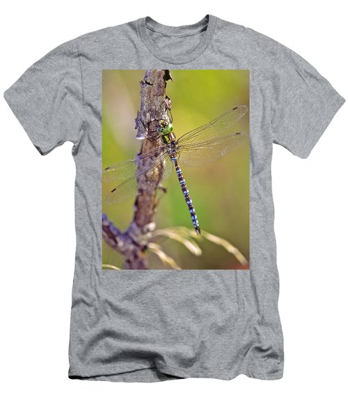 Green-striped Darner Dragonfly Men's T-Shirt (Athletic Fit)
