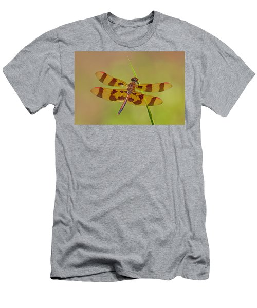 Halloween Pennant Men's T-Shirt (Athletic Fit)