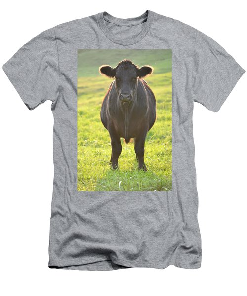 Here's The Beef Men's T-Shirt (Athletic Fit)