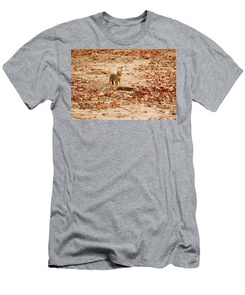 Men's T-Shirt (Slim Fit) featuring the photograph Jackal Standing Over Deer Kill by Fotosas Photography