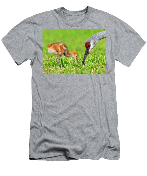 Looking For Bugs Men's T-Shirt (Athletic Fit)
