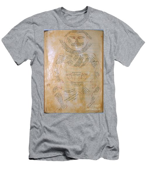 Muscles Of The Body T Shirts Fine Art America