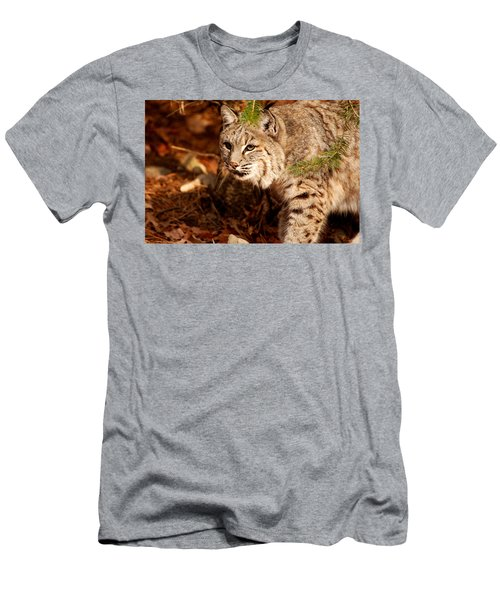 Mr. Whiskers Men's T-Shirt (Athletic Fit)