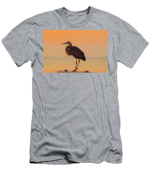 Resting Heron Men's T-Shirt (Athletic Fit)