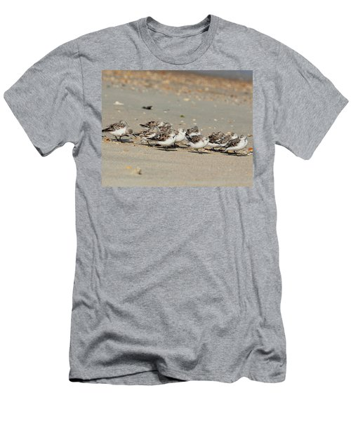Resting Sandpipers Men's T-Shirt (Athletic Fit)