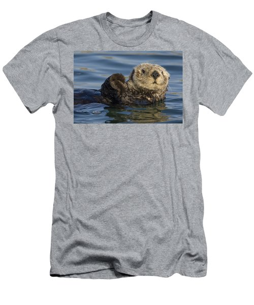Sea Otter Monterey Bay California Men's T-Shirt (Athletic Fit)