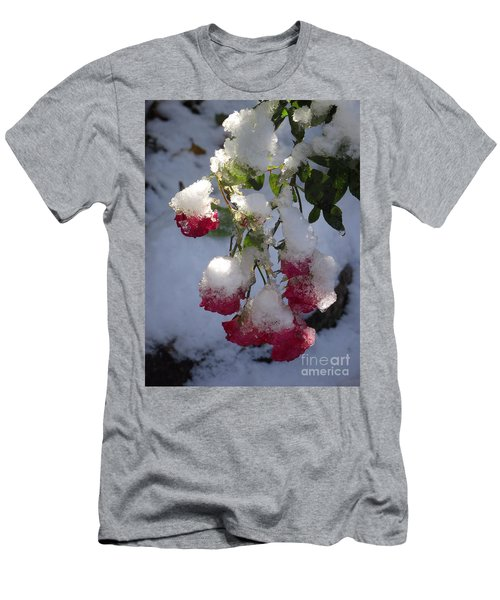 Snow Covered Roses Men's T-Shirt (Athletic Fit)