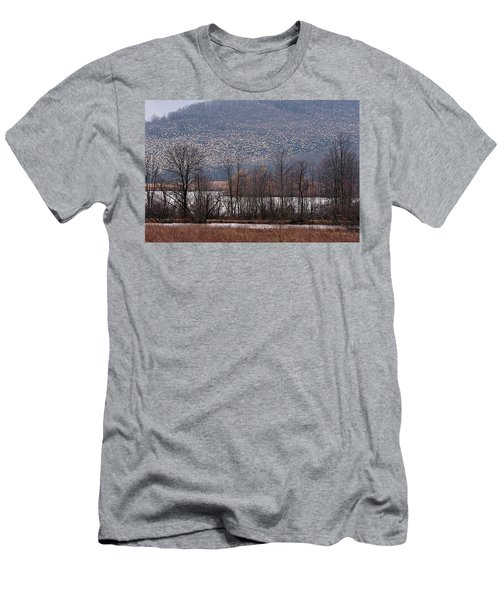 Snow Geese Rising Men's T-Shirt (Athletic Fit)