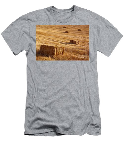 Straw Field Men's T-Shirt (Athletic Fit)