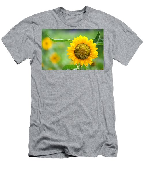 Sunflower Men's T-Shirt (Slim Fit) by Yew Kwang